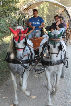 Travelling by horse drawn carriage